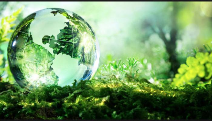 Elismerést kaptunk környezettudatosságunk miatt.
